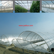 Canda Greenhouse Clear 8mil Poly Plastic Covering